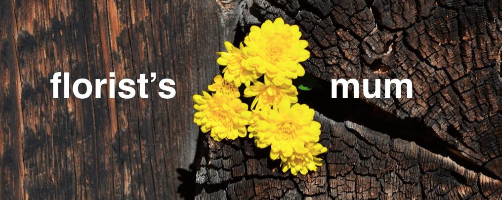 florist-mum