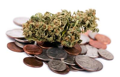 planning-for-success-5-tips-for-building-a-commercial-grow-room