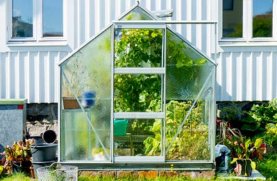 why-you-need-a-grow-tent-humidifier