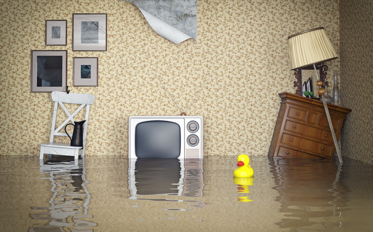 6 Steps To Take When Your House Floods